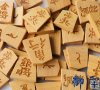 Shogi - Japanese Chess Set